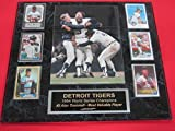 Tigers 1984 World Series Champions 6 Card Collector Plaque w/8x10 Color Photo