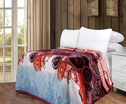 - DaDa Bedding Flannel Throw Blanket - Bohemian Paisley Dreams Soft Fleece - Bright Vibrant Floral - Multi Colorful Red Burgundy & Blue - 80