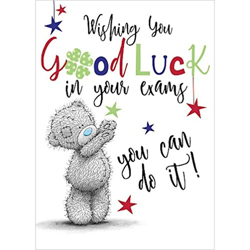 Good Luck in Your Exams Cute Me to You Bear New Greetings Card (Best Of Luck Greetings For Exams)