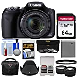 Canon PowerShot SX530 HS Wi-Fi Digital Camera with 64GB Card + Case + Battery + 3 Filters + Tele/Wide Lens Kit For Sale