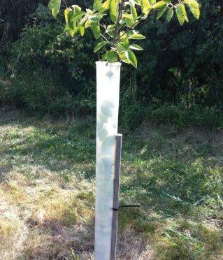 "24"" Miracle Tree Tube"