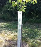 24″ Miracle Tree Tube (50) For Sale