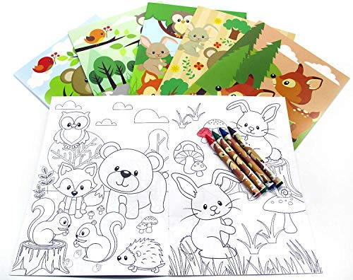 - Woodland Animals Coloring Book Set with Crayons Party Favor, 12 Pack