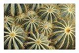 Indoor Floor Rug/Mat (23.6 x 15.7 Inch) - Cactus Parodia Magnifica Tropical Nature