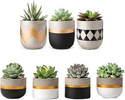 Teal For Succulent and Cacti in Home and Office Set of 3 Grey Concrete Cement Indoor Plant Flower Pots with 1 Stand Dark Blue with Rose Gold and Grey detailing. Each Pot is a Different Size; White