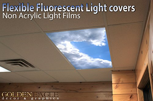 Suspended Ceiling Fluorescent Lights - 4