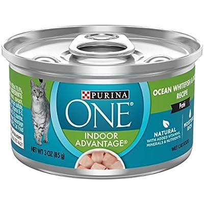 Purina ONE Cat Food