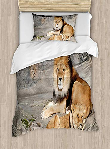 (Meet 1998 Zoo Luxury 4-Piece Bedding Set,Male and Female Lions Basking in The Sun Wild Cats Habitat King of Jungle,Duvet Covers Set Duvet Cover Bed Sheet Pillow Cases,Pale Brown Grey Yellow)