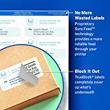 Avery File Folder Labels in Assorted Colors for