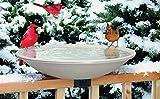 """Allied Precision 650 20"""" 150 Watt Heated Bird Bath"""