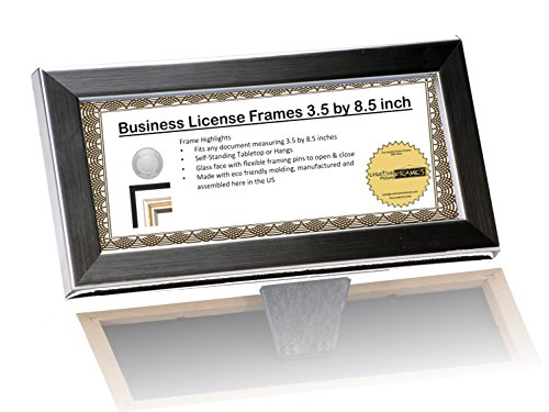 DEA Stainless Steel Like License Frame - Displays any 3.5 by 8.5 inch Document on Counter/Tabletops or Hang and Display Your Collection Together on the wall for Professionals (License Display Frame compare prices)
