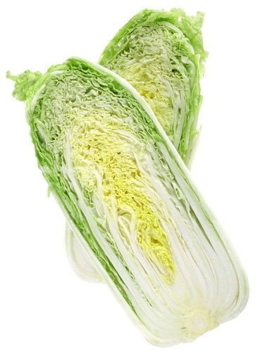 Cabbage Napa Michihli Non GMO Heirloom Asian Vegetable 1000 Seeds Sow No GMO USA ()