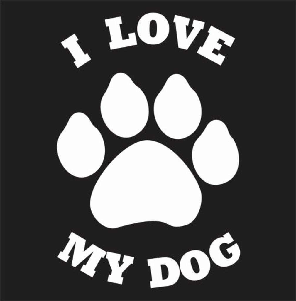 I Love My Dog Decal Vinyl Sticker|Cars Trucks Walls Laptop|WHITE|5.5 X 3.6 In CCI CCI034