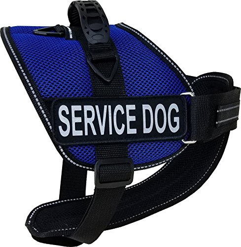 Activedogs Service Dog Kit Airtech Mesh Service Dog Vest Harness + Free Registered Service Dog ID + Clip-on Bridge Handle + 30 ADA/Federal Law Cards + Service Dog Travel Tag (L, Blue) by Activedogs (Image #1)