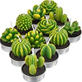 KisSealed 12 Pieces Cactus Tealight Candles Handmade Delicate Succulent Cactus Candles for Party Wedding Spa Home Decoration Gifts