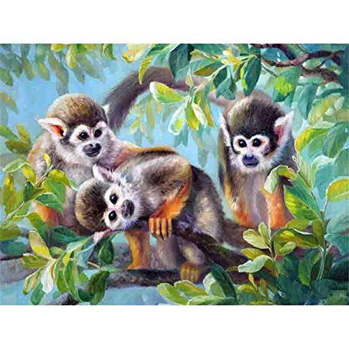 (LIPHISFUN DIY 5D Diamond Painting by Number Kit for Adult, Full Round Resin Beads Drill Diamond Embroidery Dotz Kit Home Wall Decor,30x40cm,Monkey)