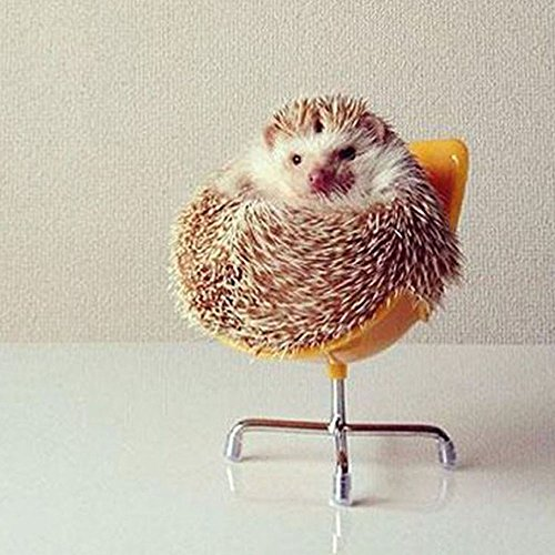 Dahey Cute Hedgehog Mini Chair Small Animal Toy Plastic Swivel Seat (Yellow)