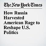 How Russia Harvested American Rage to Reshape U.S. Politics | Nicholas Confessore,Daisuke Wakabayashi