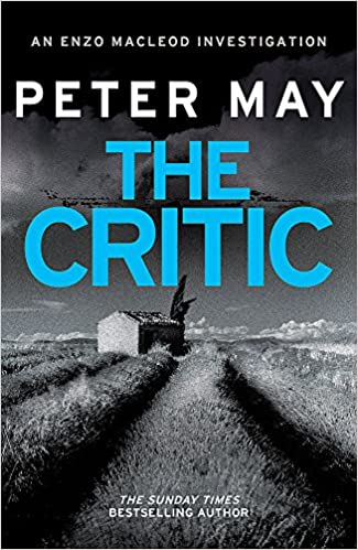 The Critic por Peter May epub
