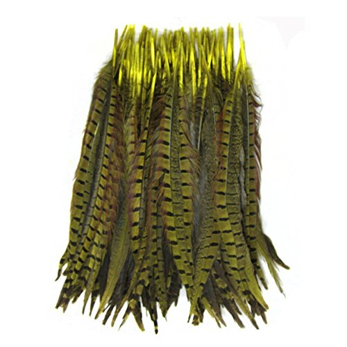 KOLIGHT Set of 50pcs Natural Dyed Pheasant Tails Feathers 22-24 Inch DIY Decoration (Yellow)