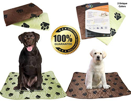 PETS ALL AROUND Washable Dog Pee Pads for Puppy Training  Super Absorbent, Anti-Tracking Dryness | Whelping, Incontinence, Potty | Indoor Floor and Crate Protection-(2 Pack)