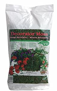 Luster Leaf Decorator Moss - 675 Square Inches DN15