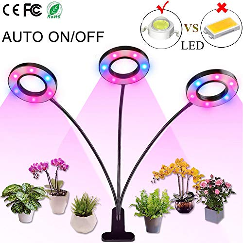 Professional Grow Light, 36W LED Full Spectrum Plant Light for Indoor Plants, Auto ON Off Timer, 8 Dimmable 4/8/12H Timing Triple Head Growing Lamp for Gardening Seedling Herb Succulent Hydroponic (Best Grow Lights For Orchids)