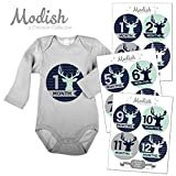 12 Monthly Baby Stickers, Boy, Deer, Antlers, Baby Belly Stickers, Baby Month Stickers, First Year Stickers Months 1-12, Chevron, Blue, Navy, Navy Blue, Mint, Gray, Grey, Woodland, Baby Boy