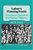 Labor's Flaming Youth, Stephen H. Norwood, 0252016335
