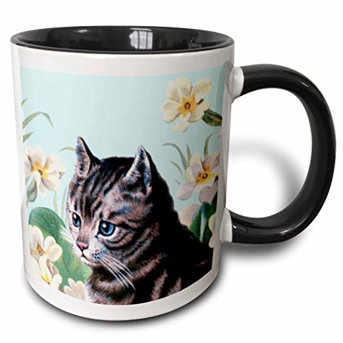 - 3dRose InspirationzStore Vintage Art - Cute grey kitten - vintage art tabby cat with sweet blue eyes in garden - white flowers - gray kitty - 15oz Two-Tone Black Mug (mug_151421_9)