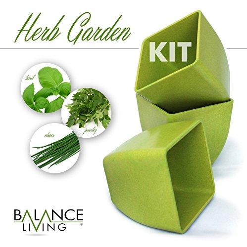 pot growing kit - 4