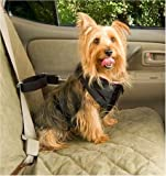Pet Vehicle Safety Harness Size: Medium: Dogs 20-55 lbs, My Pet Supplies