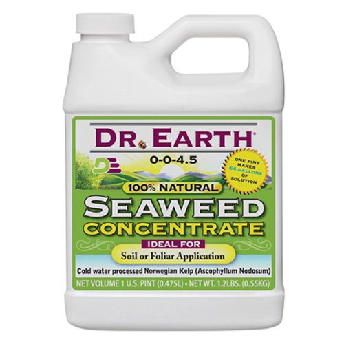 Dr. Earth 755 Seaweed Concentrate, 16-Ounce (Best Doctor On Earth)