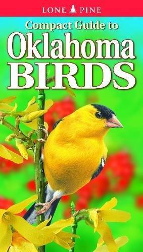 Download Compact Guide to Oklahoma Birds pdf epub