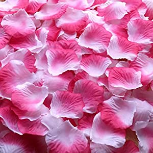 Gresorth Rose + White Artificial Silk Rose Petals Fake Petal Flower Wedding Bridal Decoration - 10000 PCS 6