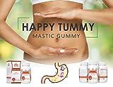 Mastic Gum 1000 mg 120 Vegetarian Capsules by Logic Nutra, Supports gastrointestinal Health, Digestive System, Immune and Oral Wellness Pylori Plex