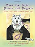 Meet the Boys, Raisin and Pepper, Sandra K. Sondgeroth, 1612046673
