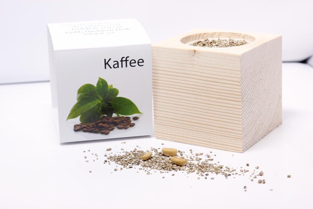 ecocube Kaffee Wort im Bild