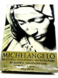 img - for A Survey Of Michelangelo's Models In Wax And Clay book / textbook / text book