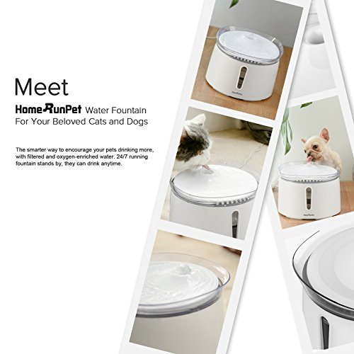 HomeRunPet Water Fountain Automatic Fresh Flow for Cats and Small to Medium Dogs, 2-Liter by HomeRunPet (Image #1)