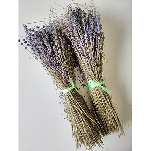 (JF Dried French Lavender Bunches-Set of 2)