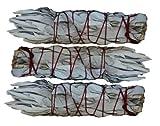Kyпить SK White Sage INC. Mini White Sage Smudging Stick (3-Pack) 4