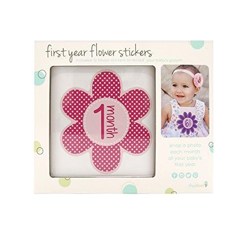 Tiny Ideas Monthly Milestone Stickers product image