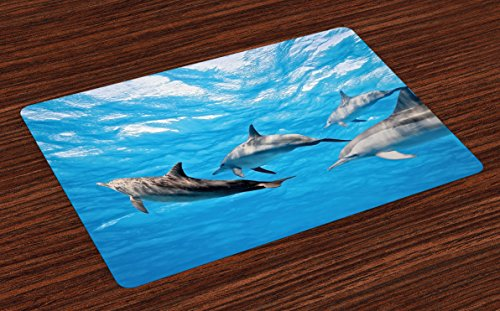 - Ambesonne Dolphin Place Mats Set of 4, Underwater Photography of Dolphins Happily Swimming Ocean Animal Life Image Print, Washable Fabric Placemats for Dining Room Kitchen Table Decor, Blue Grey