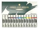 13 The Turner acrylic gouache (12 colors) School set (japan import)
