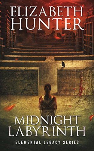 Midnight Labyrinth Book Cover