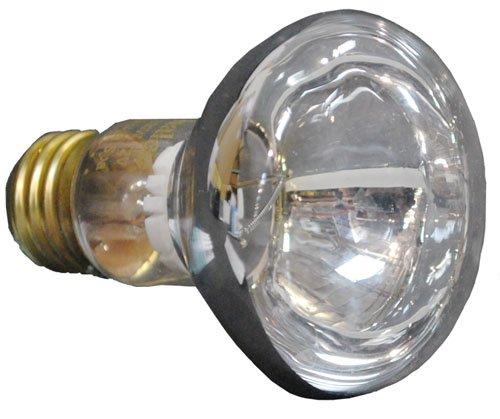 100 Watt R20 Flood Light Bulbs - 3