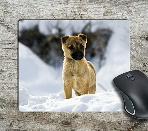 - Cute Puppy in The Snow Computer Anti-Slip Mousepad Mouse Pad Mouse Mat Matt Pad