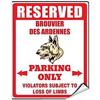Reserved For Brouvier Des Ardennes Dog Loss Of Limbs Vinyl