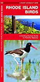 Rhode Island Birds: A Folding Pocket Guide to Familiar Species (A Pocket Naturalist Guide)